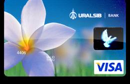 Visa Classic Light