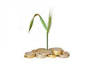 Кредитование сельского хозяйства в России